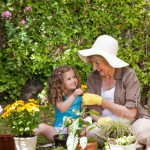 TOP TOOLS FOR KEEPING A GREAT GARDEN