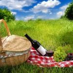 Six Picnic Essentials